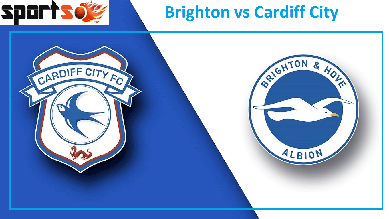 Brighton vs Cardiff City